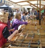 La 20a edició de la Festa i Fira de les Trementinaires s'avança una setmana