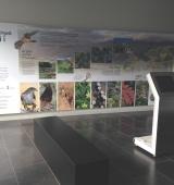 L'Espai Ermengol inaugura dimarts una exposició sobre la natura a l'Alt Urgell