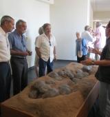Dinosfera arriba a les 10.000 visites d'ençà de la seva obertura