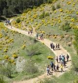 Més de 250 alumnes de l'Alt Urgell participen a les sortides de descoberta del patrimoni