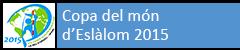 Copa del món d'Eslàlom 2015