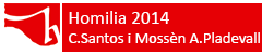 Homilia 2014